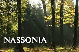 nassonia 2.jpg