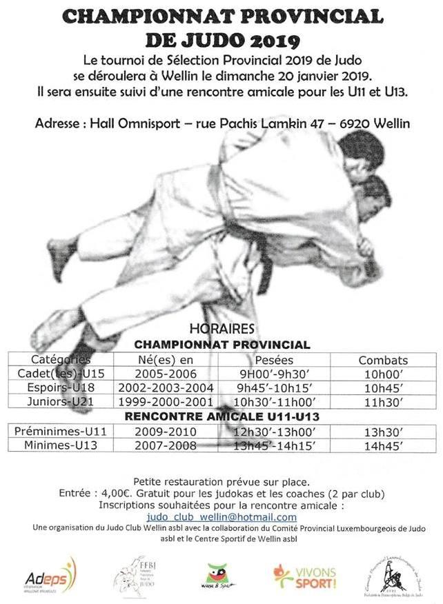 judo 2019 wellin.jpg