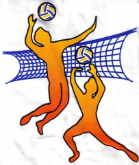 volley ball.jpg