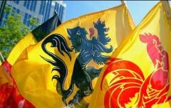 drapeaux belgique.jpg