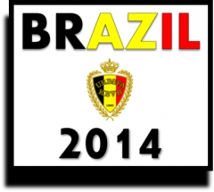 brazil 2014 belgium.jpg