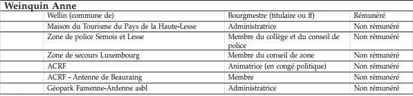 Bughin Anne mandats.JPG