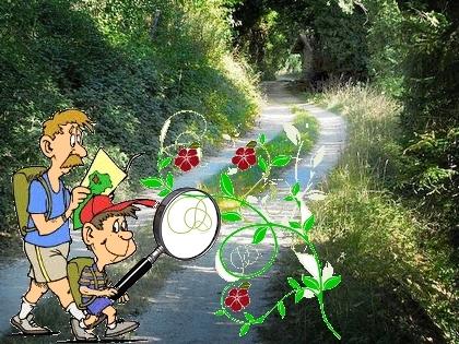 balade botanique.jpg
