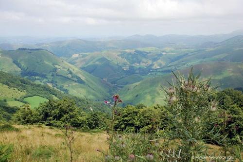 pays basque 2.jpg