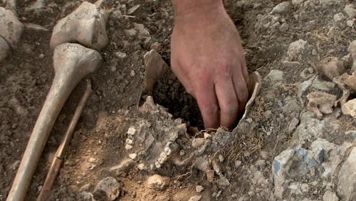 fouilles froidlieu.jpg
