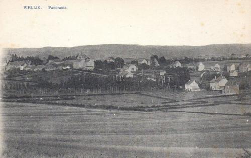 wellin panorama.JPG