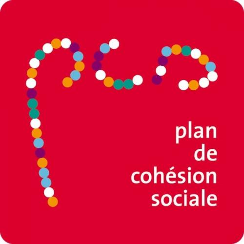 plan de cohésion sociale.jpeg