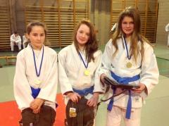 judo championnat provincial u15 2016.jpg