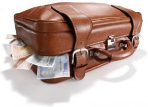 valise argent euro.jpg