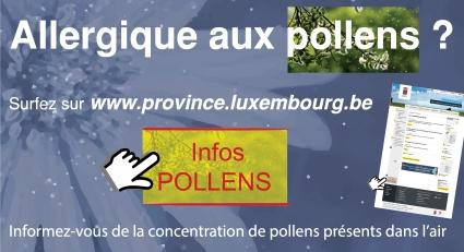 affiche-pollens-2013.jpg