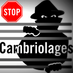 cambriolage.png
